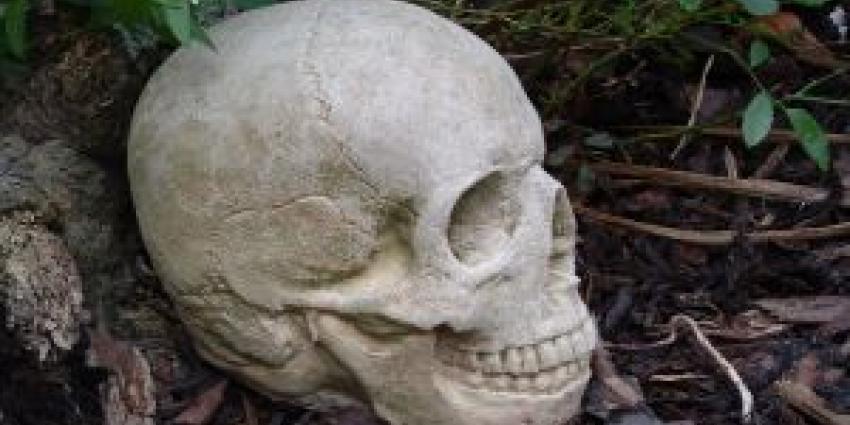 Schedel gevonden in IJzendoorn