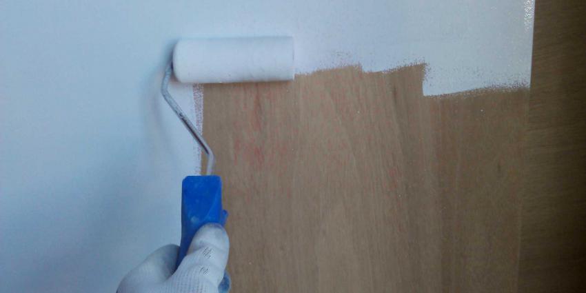 schilder-roller-verf