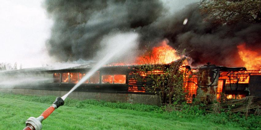 Grote brand kippenschuur Waddinxveen