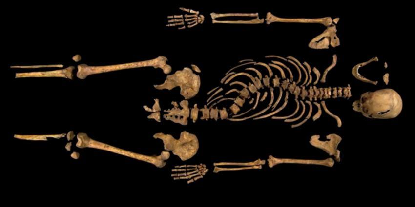 Stoffelijk overschot Koning Richard III geïdentificeerd