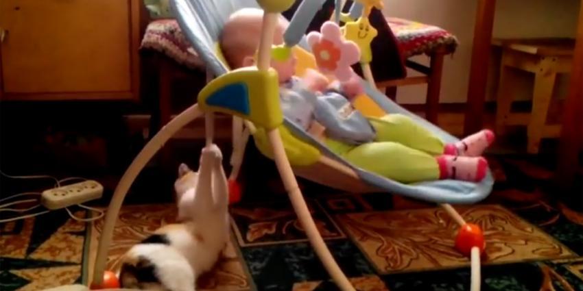 Kat blijkt prima nanny voor baby