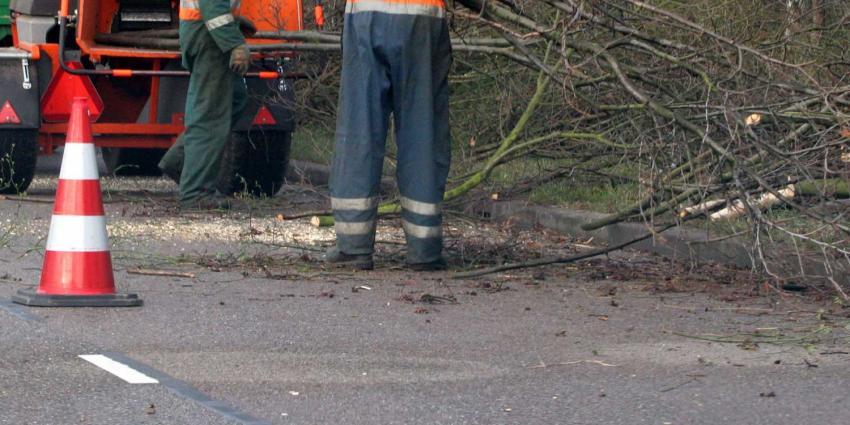 Man die collega groenvoorziening doodde met spade ontoerekeningsvatbaar
