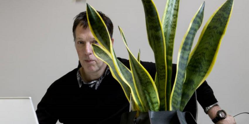 Directeur René Pingen van het Stedelijk Museum 's-Hertogenbosch overleden