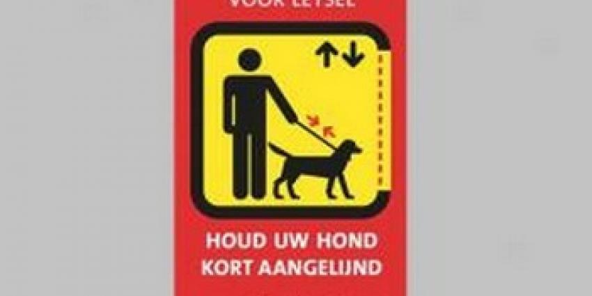 Foto van sticker van Liftinstituur | liftinstituut