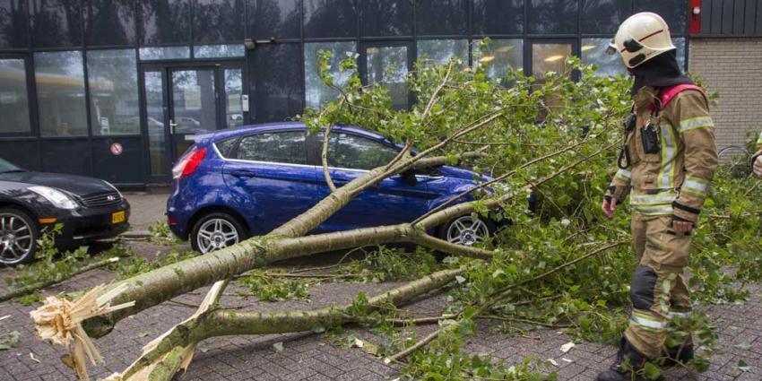 Brandweer regio Rotterdam druk met stormmeldingen
