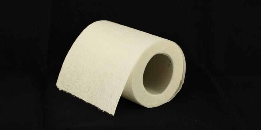wc, toilet, papier