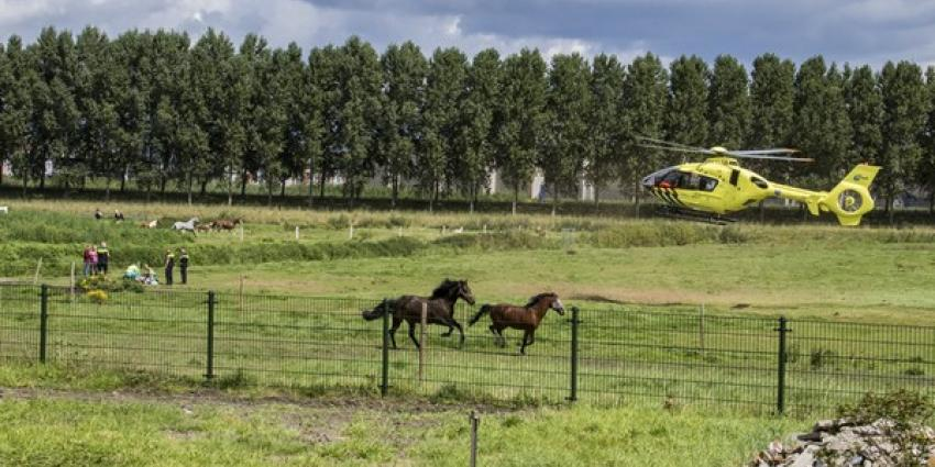 Meisje gewond na trap van paard