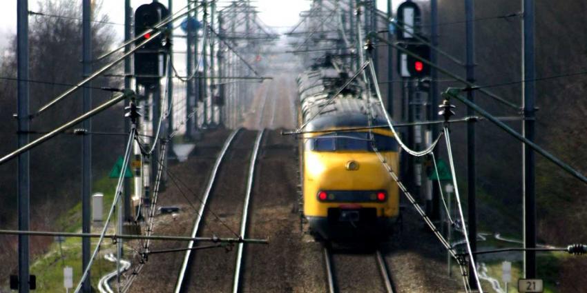 Mooiste stukje spoorlijn loopt langs Oostvaardersplassen