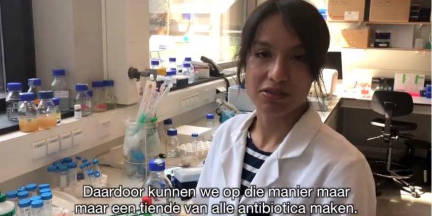 Bacteriën als levende fabriekjes voor de productie van antibiotica