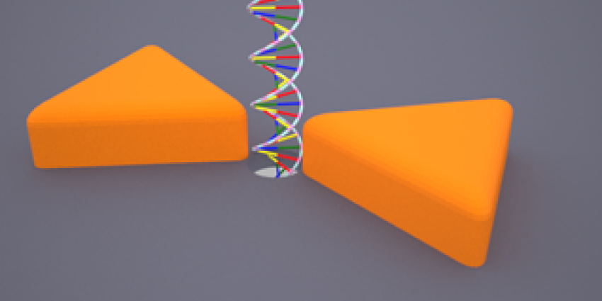 Nanogaatje met Plasmonic antennes   TU Delft