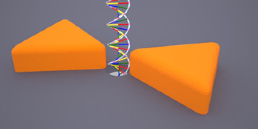 Nanogaatje met Plasmonic antennes | TU Delft
