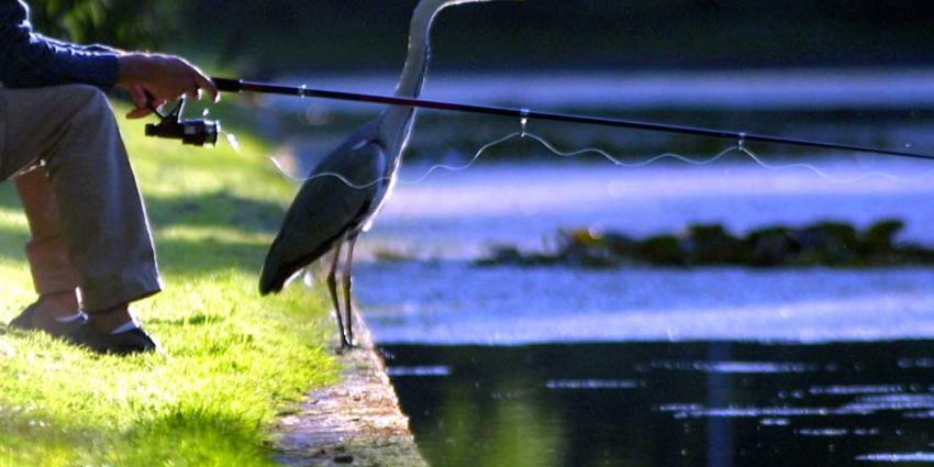 Opnieuw zoekactie visvijver in onderzoek Andy de Heus