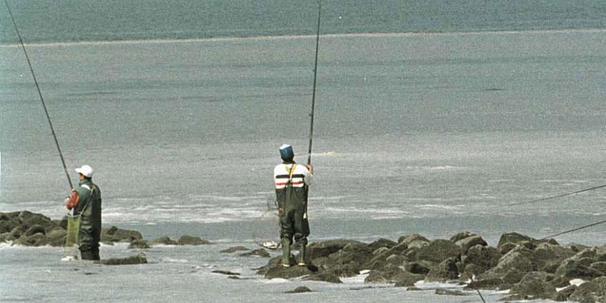 Belgische visser ziet over zijn dobber reuzenhaai verschijnen