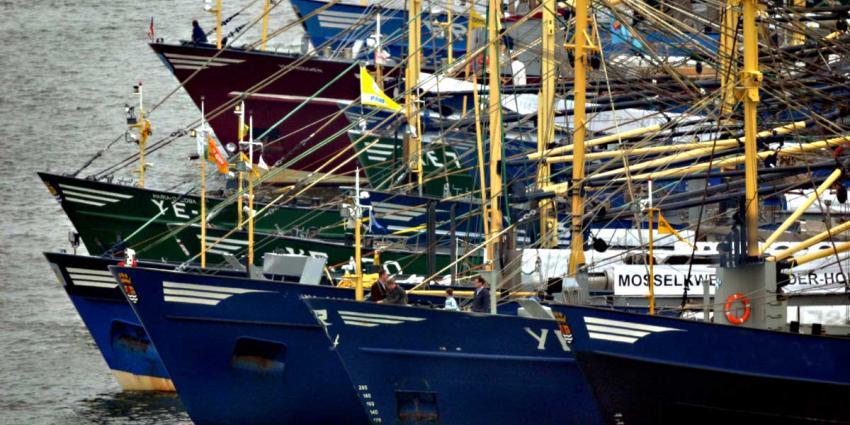 Foto van vissers schepen | Archief EHF