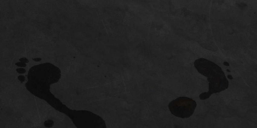 Insluiper opgespoord door voetafdrukken in rijp op dak