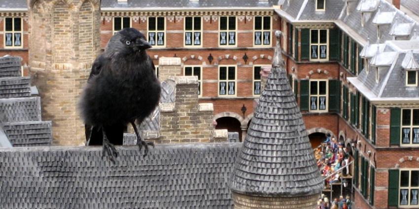 Vogelbescherming: help u ook mee tellen van vogels