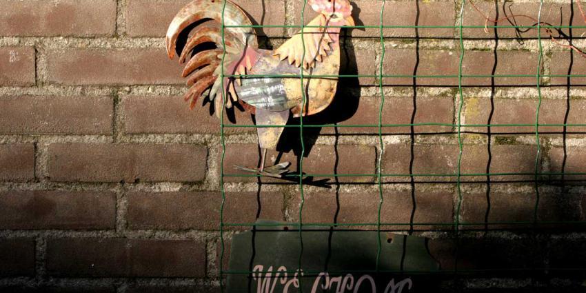 Ophokplicht en landelijke maatregelen vogelgriep ingetrokken