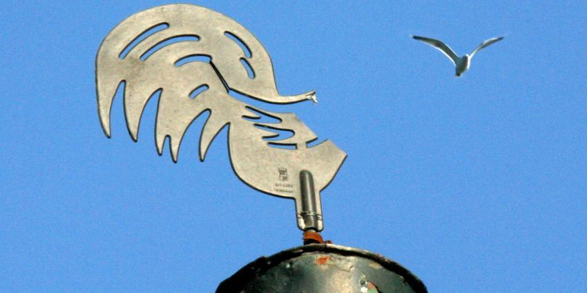 Vogelgriep in Zoeterwoude