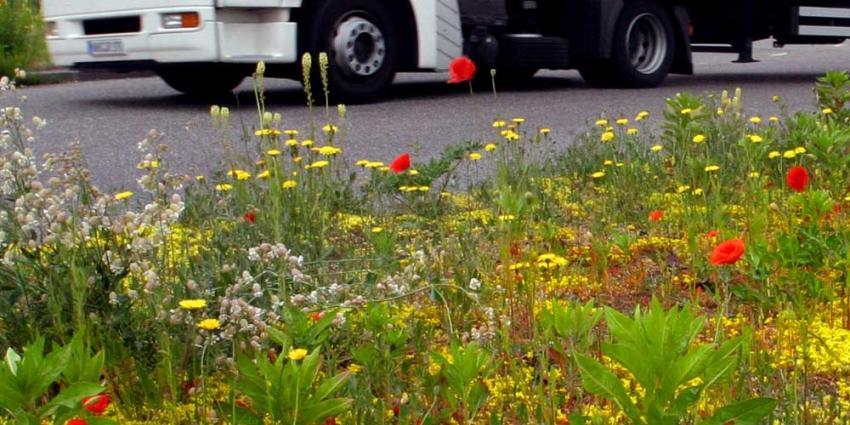 'Uitstoot vrachtverkeer in steden kan tot 70% omlaag'