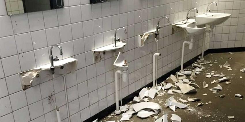 Vandalisten gaan als 'beesten' tekeer in oude dierenpark Emmen