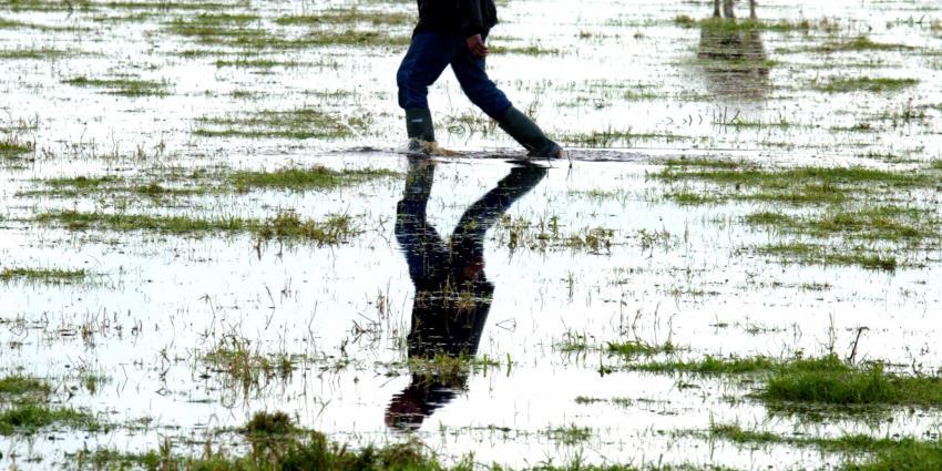 Waterschap test waterbergingslocatie Hooge Boezem in Haastrecht