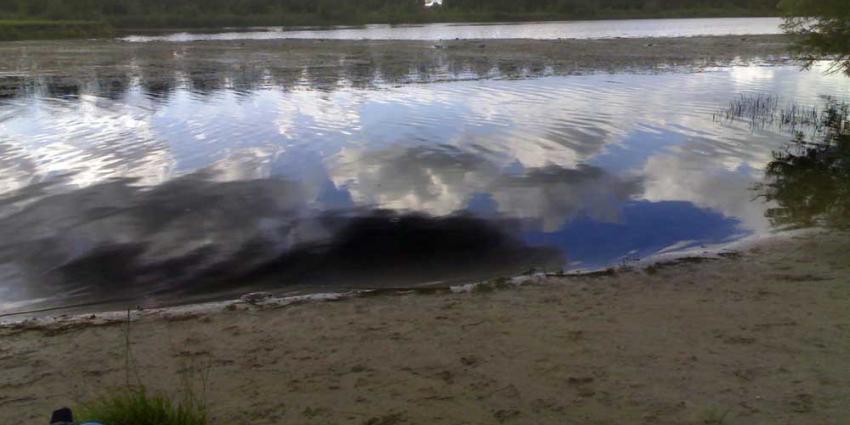 Otter Nieuwkoopse Plassen dood gevonden