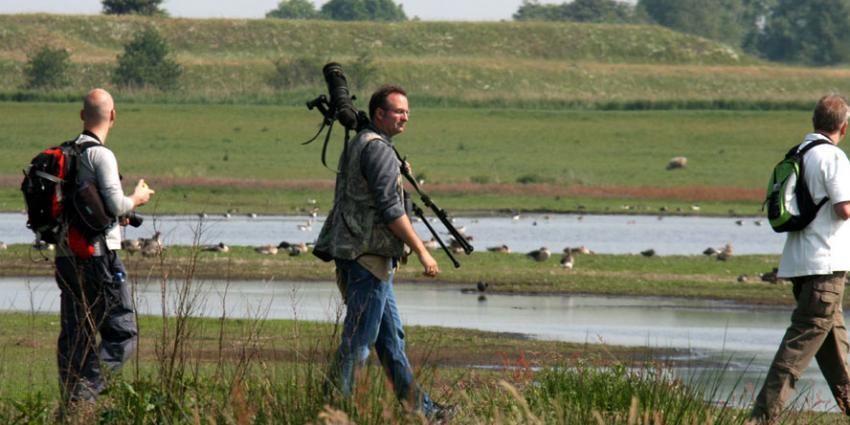 Van Dam wil teruggang weidevogels aanpakken