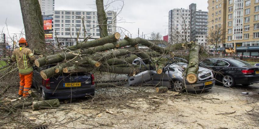 Bijna 500 stormmeldingen voor hulpdiensten