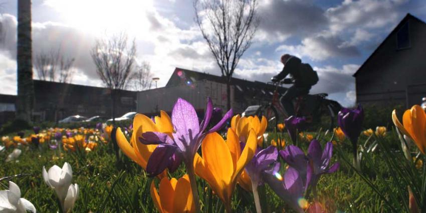 Mooie lenteweer zorgt mede voor hoger opkomstpercentage bij stembureaus
