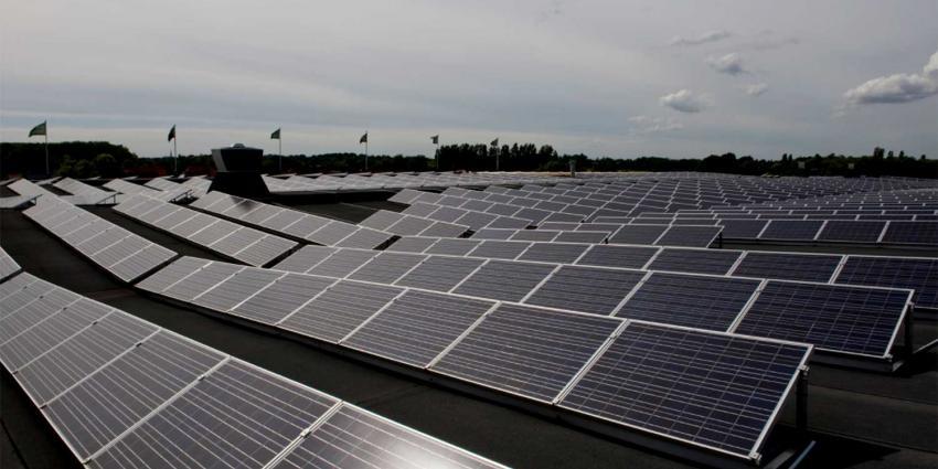Maatregelen TenneT en Enexis vanwege extra groei zonneparken