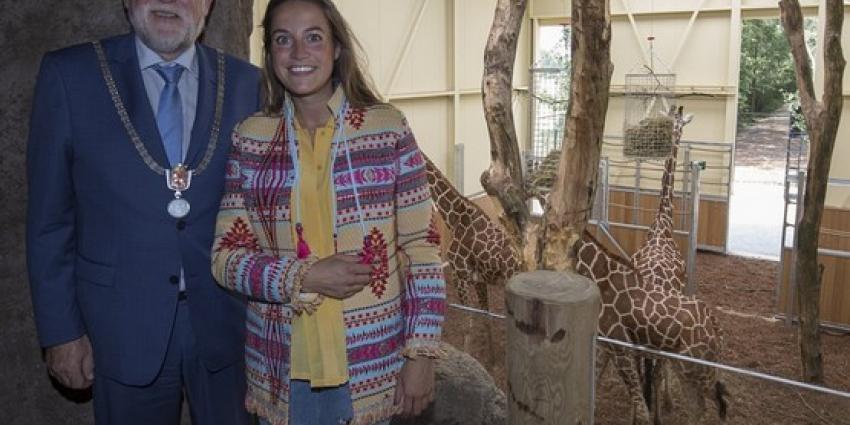 Netgiraffen en Brazzameerkatten feestelijk verwelkomd in ZooParc Overloon!