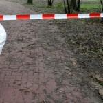 Politie vindt babylijkje in park Alkmaar