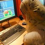 Foto van computer internet moslima   Archief EHF