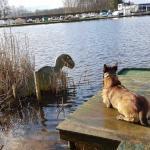 Vondst dinosaurus Almelo blijkt 'opgeblazen' nepnieuws
