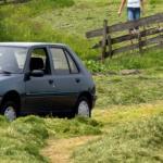Rijden we binnenkort op gras?