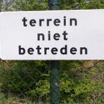 'Krokodillen-alarm' in natuurgebied bij Maasdam