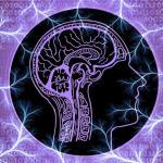 hersenen-zenuw-magnetisch-veld-stimulatie