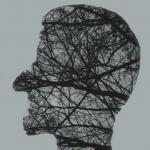 hoofd-takken-bomen-hersenen