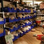 Nederlander (54) op Bali aangheouden in onderzoek naar wildlife crime