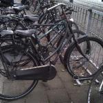 Politie zoekt eigenaar fiets in onderzoek dood krantenbezorgster Anita van Dijk