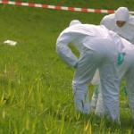 Foto van forensisch onderzoek grasveld   Archief EHF