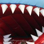 springkussen-tanden-haai