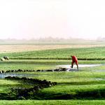 waterschade-boer