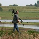eidevogelsoorten fors afgenomen