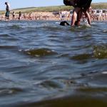 Poepbacterie duikt op in zeewater bij Hoek van Holland