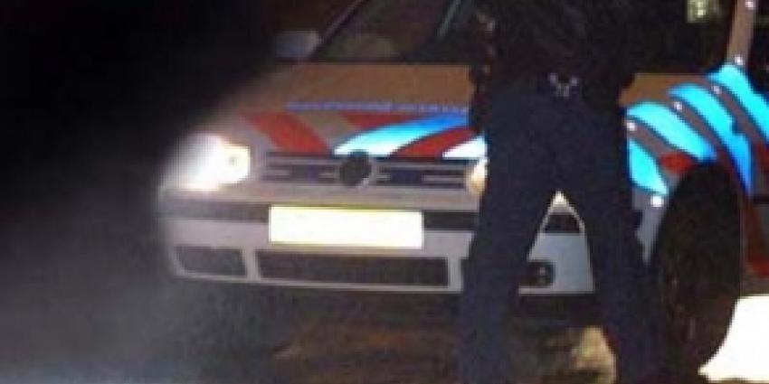 Fot van agent bij politieauto   Archief FBF.nl
