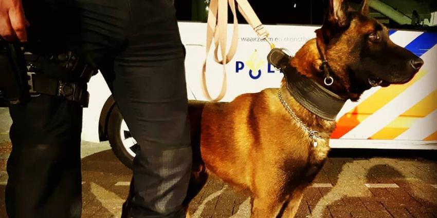 Politiehond nodig bij geluidsoverlast