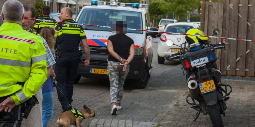 Politie lost waarschuwingsschot bij aanhouding in Schiedam