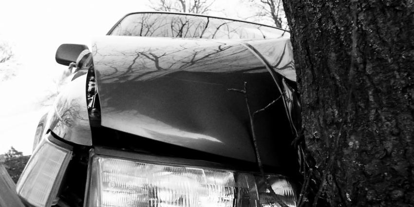 Foto van auto tegen boom   Archief MV