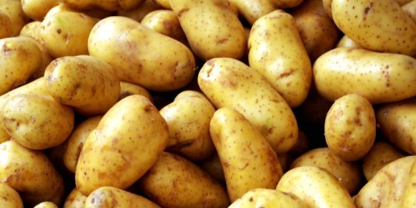 Foto van aardappelen | MV